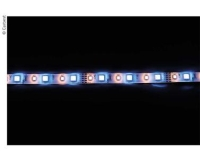 12v-led-band-rgbw-rood-groen-blauw-warm-wit-ip65-10mm-breed-__thb.jpg